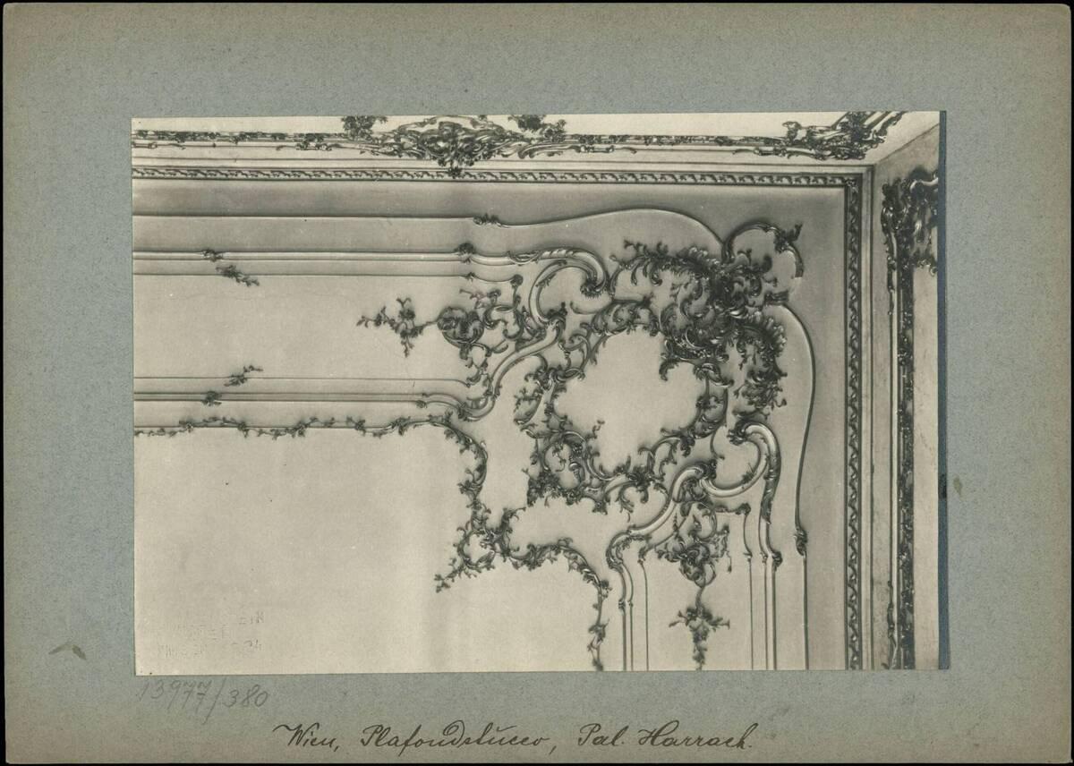 Fotografie eines Details aus der Stuckverziehrung des Plafons im Palais Harrach (vom Bearbeiter vergebener Titel) von Reiffenstein, Bruno