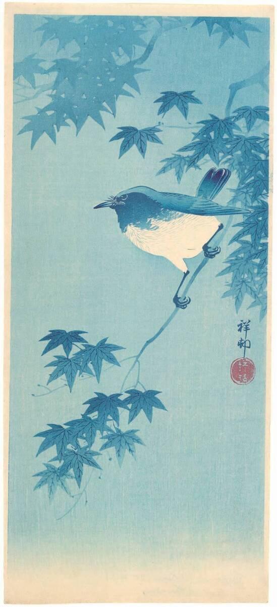 Vogel auf einem Ahornzweig (vom Bearbeiter vergebener Titel) von Anonym