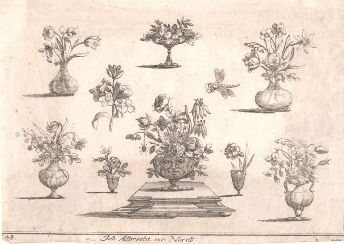 7 Vasen mit Blumen und eine Obstschale (vom Bearbeiter vergebener Titel) von Albrecht, Johann