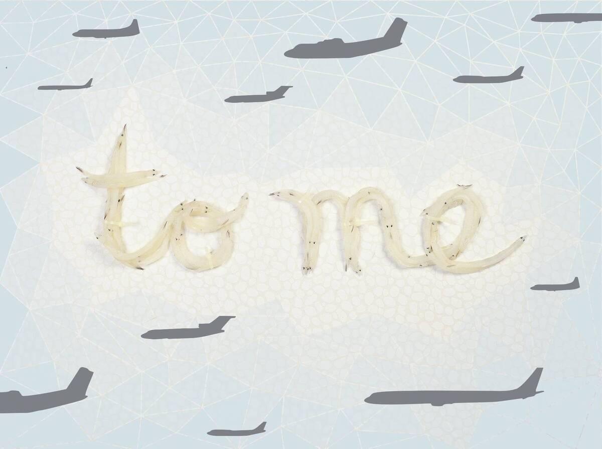 """Dekoratives Panneau mit Detailansicht des Entwurfes """"to me"""" aus der Serie """"Everything I do always comes back to me"""" von Sagmeister, Stefan"""