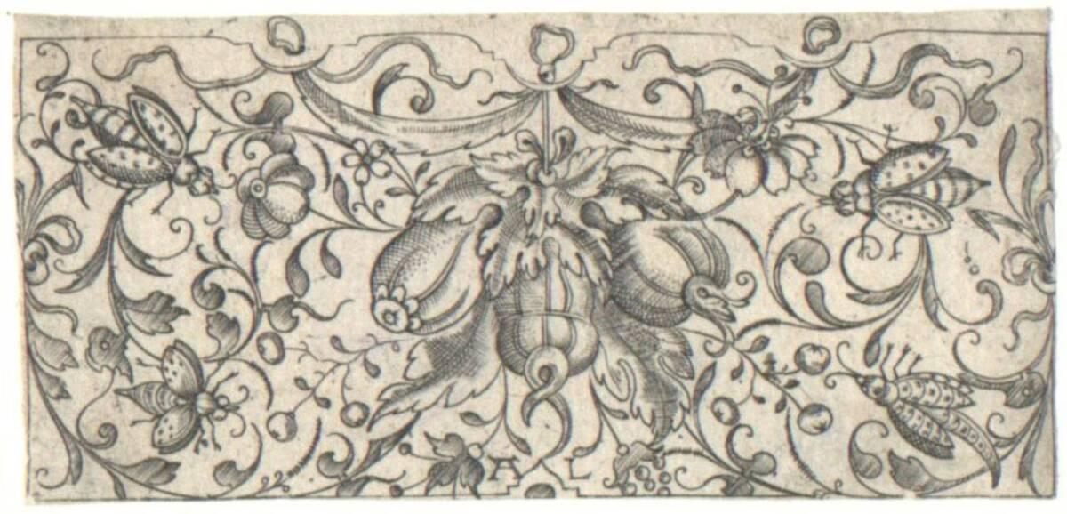 Ornament mit Früchten, umgeben von Insekten, aus einer Folge von 12 Ornamentstichen (vom Bearbeiter vergebener Titel) von Luining, Andreas