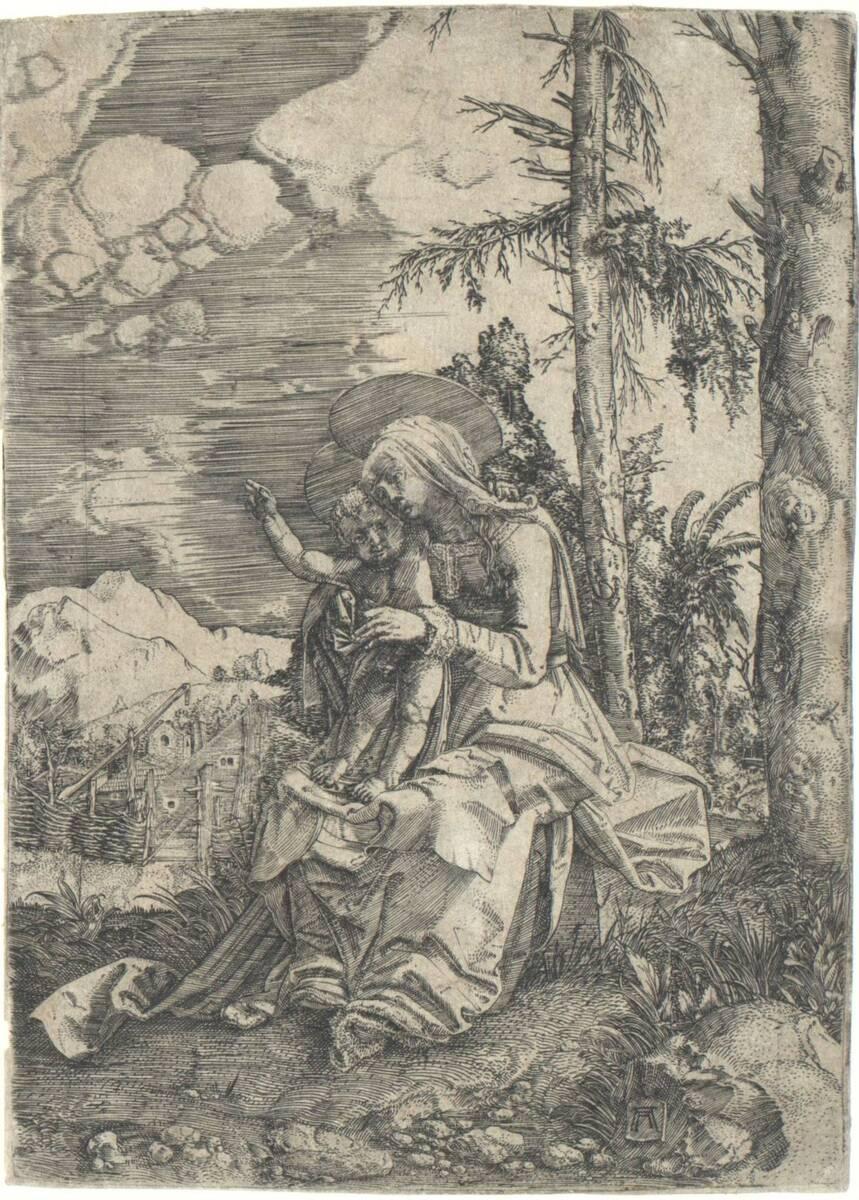 Maria mit dem Kind in einer Landschaft (vom Bearbeiter vergebener Titel) von Altdorfer, Albrecht