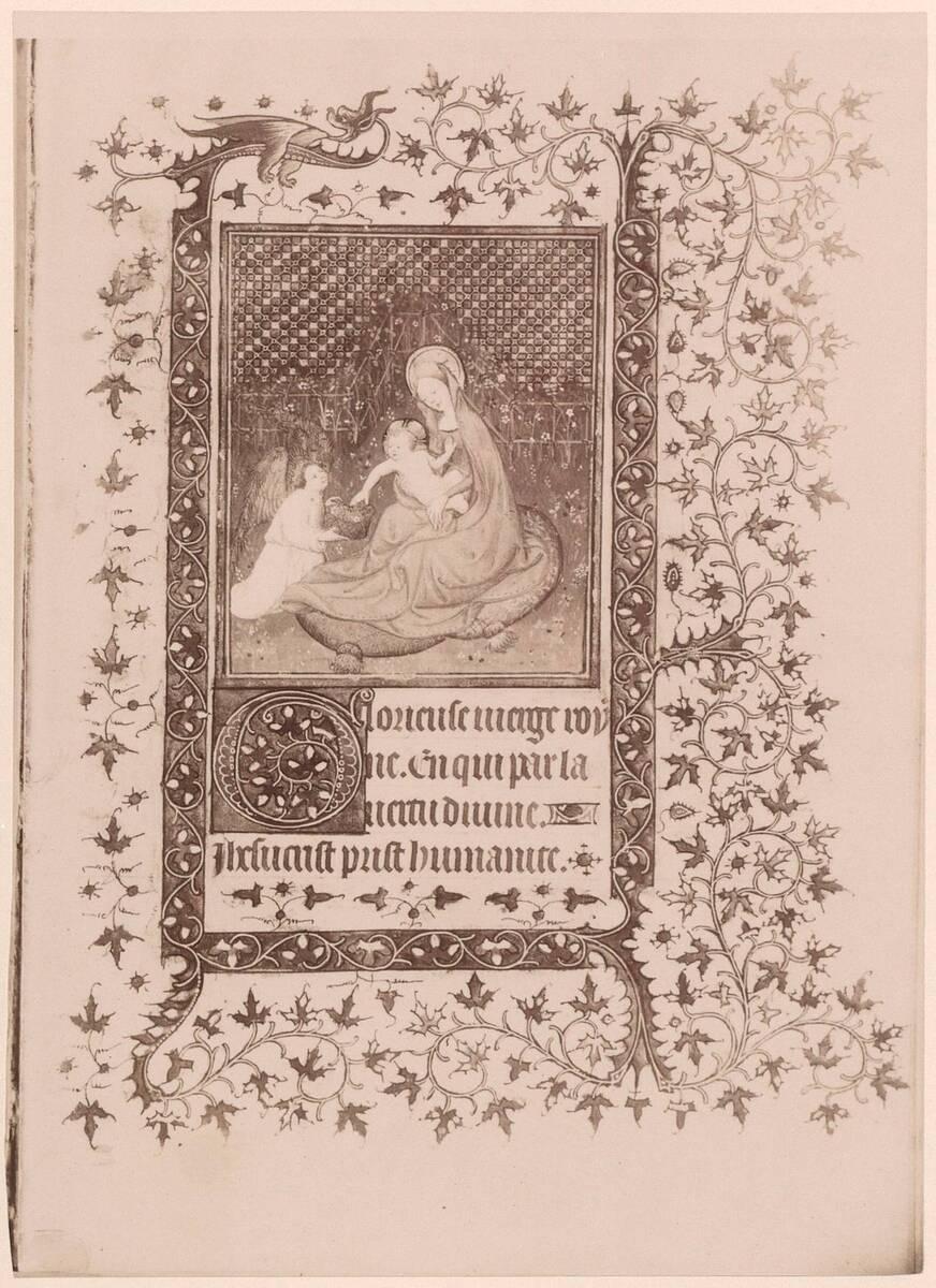 Fotografie einer französischen Buchmalerei aus einem Gebetbuch, aus der ersten Hälfte des 15. Jh., in der Österreichischen Nationalbibliothek (cod. 2656) von Gmeiner, Wilhelm