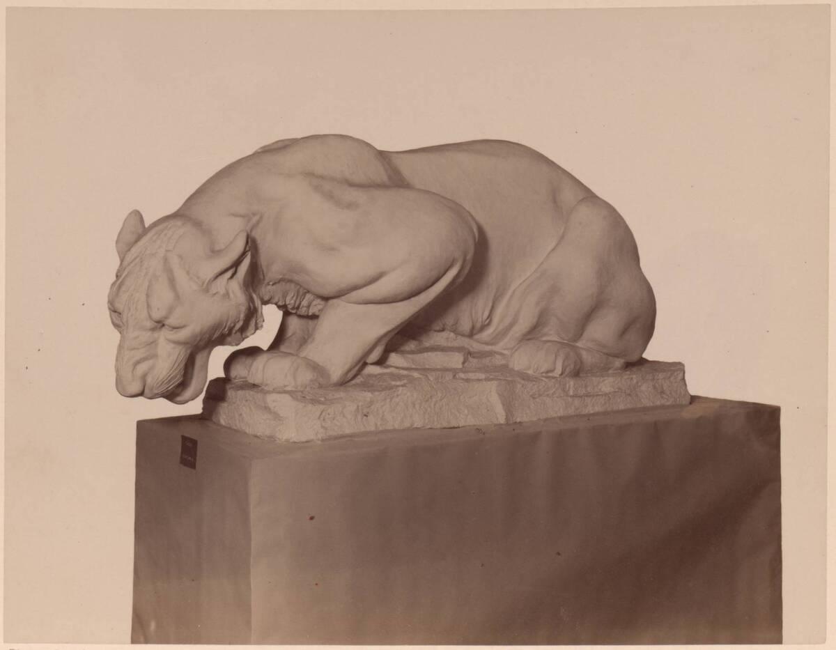 Fotografie einer Stein-Statue eines Tigers, von Friedrich Gornik (vom Bearbeiter vergebener Titel) von Gornik, Friedrich