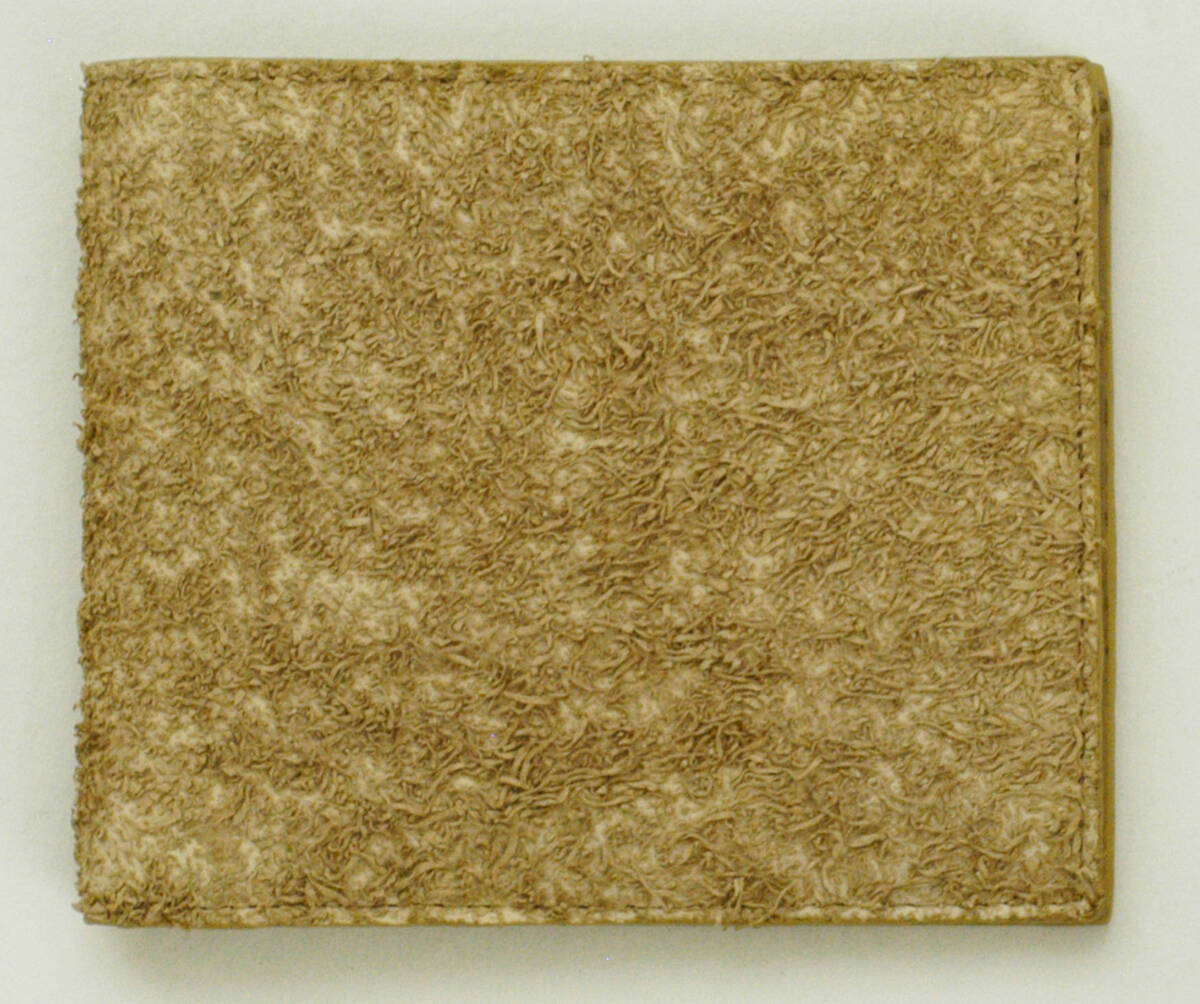 Portemonnaie - beige (deskriptiver Titel) von Lang, Helmut