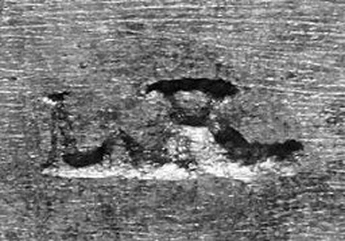 Digitales Foto einer Punze von Rolletschek, Leopold