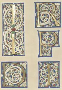 Kopie mehrerer Initialen mit den Buchstaben D, I, P und R in einem Ovid aus der Österreichischen Nationalbibliothek von A.J. Noltsch (vom Bearbeiter vergebener Titel) von Noltsch, A.J.
