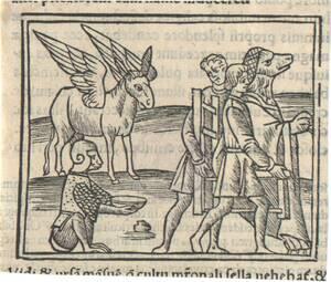 Illustration aus der von Philippus Beroaldus kommentierten Ausgabe Metamorphosen des Apuleius, Venedig 1503 (vom Bearbeiter vergebener Titel) von Anonym